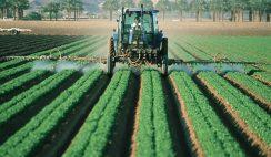 Trabaja en el campo. Ofertas para: capataces, agentes forestales, peones, jardineros, tractoristas... 7